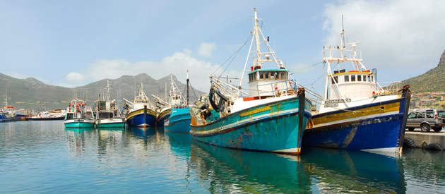 Cape Town - Hout Bay, in the Western Cape, South Africa